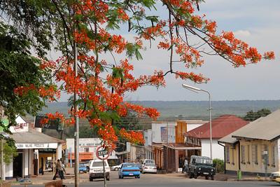 Livingstone...