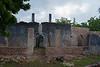 Fukuchani ruin, Zanzibar, Tanzania, Africa. March 2008