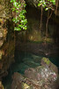 Tazari limestone cave, Zanzibar, Tanzania, Africa. March 2008