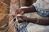 Zanzibar weaver, Zanzibar, Tanzania, Africa.  March 2008
