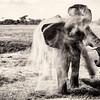 Dusk Bath_