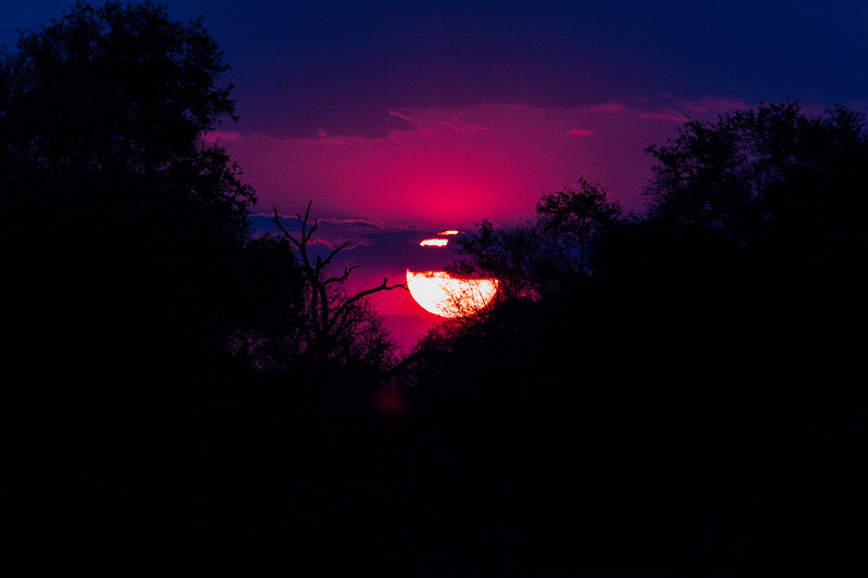 Pink Sunset.  S Luangwa National Park