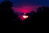 Pink Sunset.  S Luangwa National Park