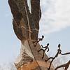 Burkina Faso Sculpture Garden