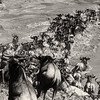 The Migration crossing 2_