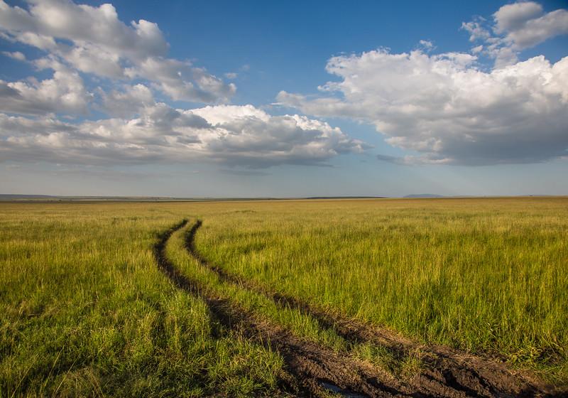 Maasai Mara-1343