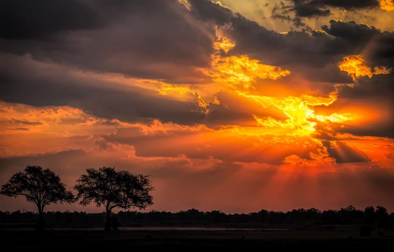 Sunset rays. S Luangwa National Park