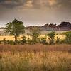 Serengeti Landscape 2380