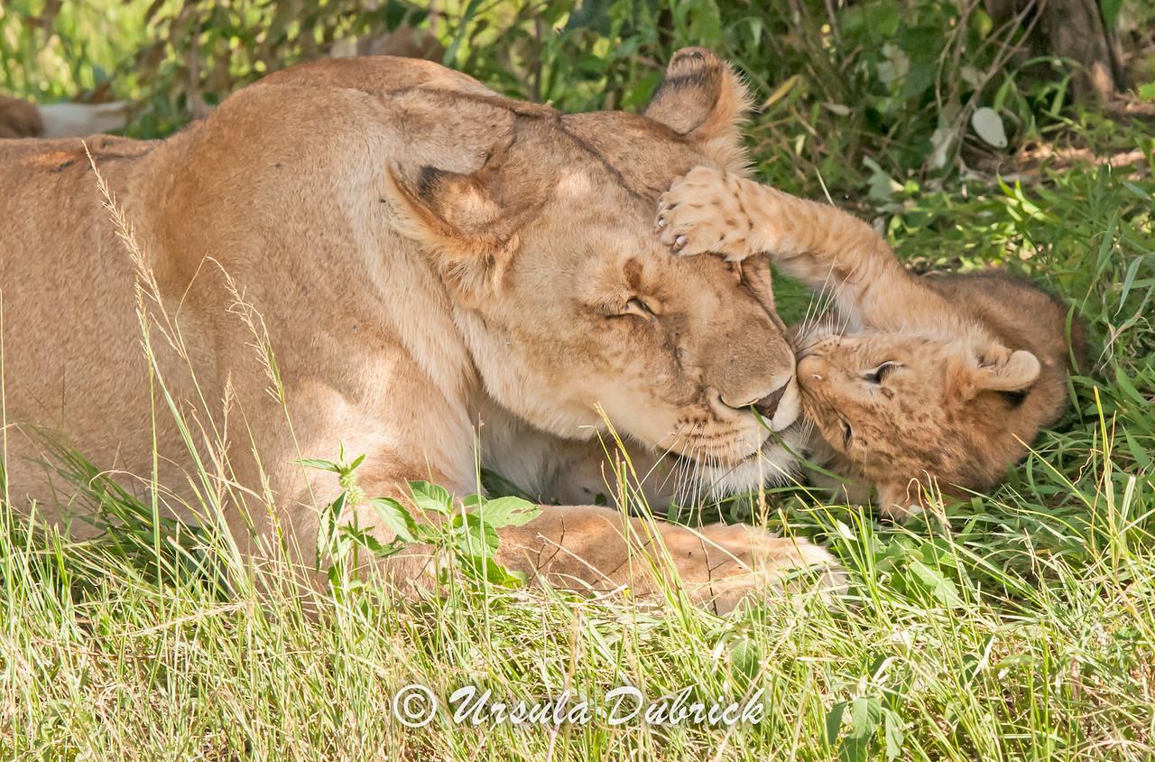 Patient Mom- Kenya