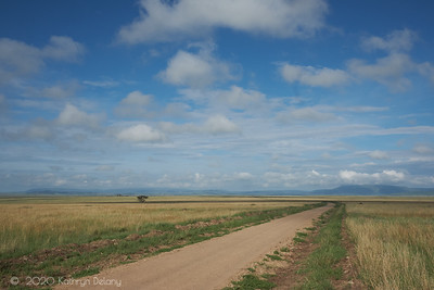 This is a road we travelled on into and out of the Serengeti. It epitimizes the vast space that is the Serengeti Conservation Area and our wonderful visit there