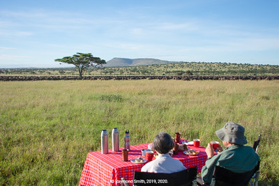 Breakfast With the Wildebeest