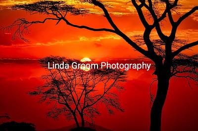 Serengeti Siunset