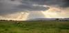 Maasai Mara-2570_1_2