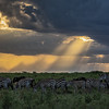Sunset over the Serengeti-2