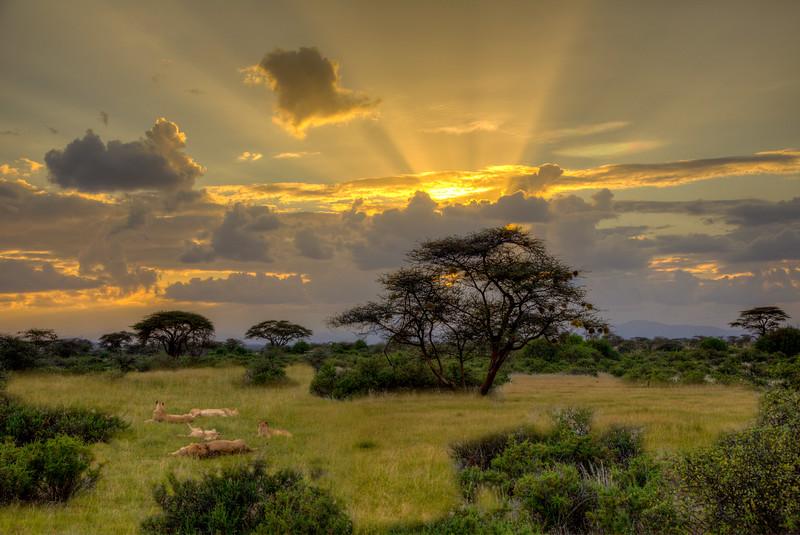 Samburu-308_09_10-Edit