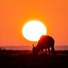 Wilby Sunrise
