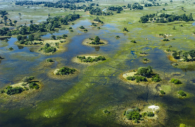 Before the Okavango Waters Recede