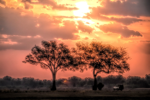 Ethereal safari.  S Luangwa National Park
