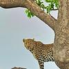 ADS_Kenya_000035368