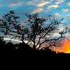 Sunrise Vic Falls 1x2