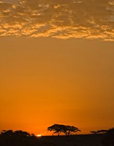Sunrise in Amboseli, Kenya
