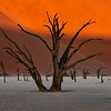 Deadvlei Before Sunset