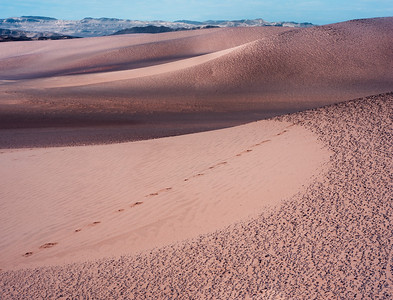 Namibia, Skeleton Coast Park, Africa / Black volcanic rock creates patterns coving the sand dunes near the coast. 1109H1