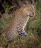 Samburu-285