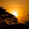 Lewa Wildlife Conservancy, Kenya