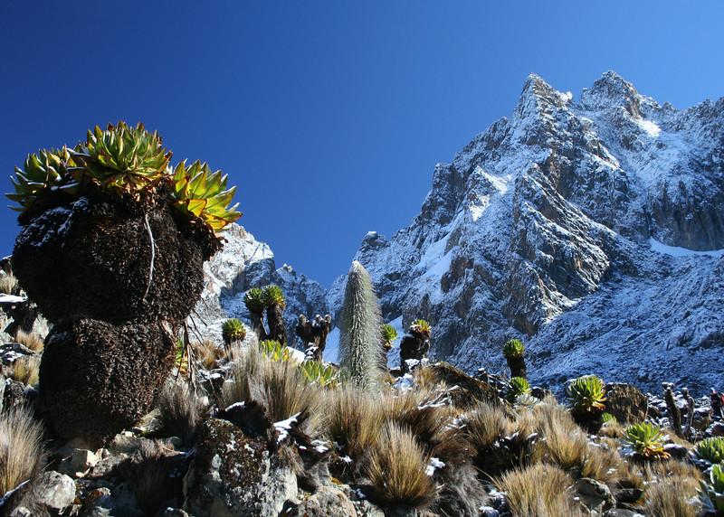 Mount Kenya with fresh snow