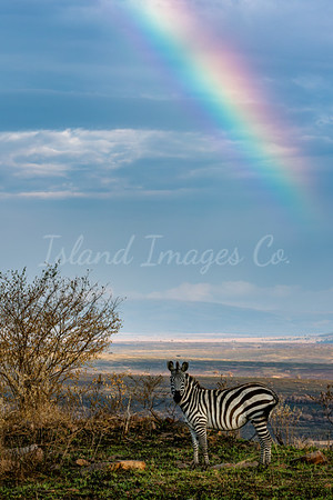 Rainbow at Lookout point