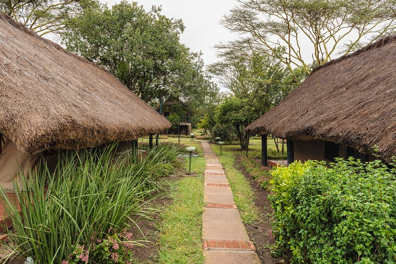 _HV86831-Edit_Sweetwater Tented Camp, Kenya_20190925