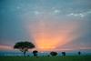 Sunset over the savannah. Murchison Falls N P, Uganda 2012