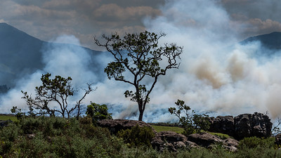 Wild Fire, River Blyde Canyon