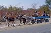 donkey chariot,ezelskar,chariot dáne,Botswana