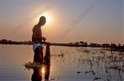 Okavango reserve,reservaat, réserve,fisherman,visser,pecheur,Botswana
