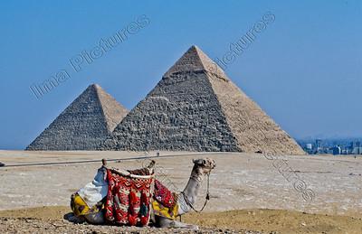 pyramids at Giza,piramiden van Gizeh,pyramides de Gizeh,Egypt,Egypte