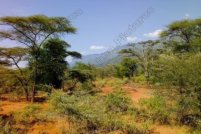 Iten,Kenya