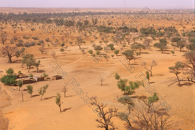Teli,Dogon,village,dorp,village,savanna,savane,savan