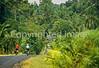 Bali - Backroads - 32 - 72 ppi