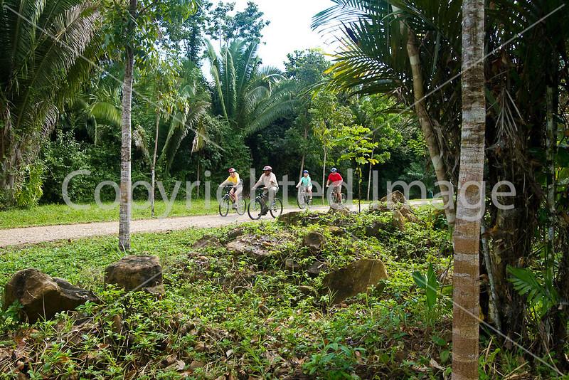 Belize -  8M#2-0151 - 72 ppi