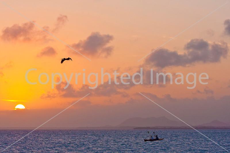 Belize - Kayak at sunset - bird - 72 ppi