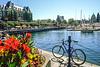 Cyclist(s) in downtoan Victoria, Vancouver, British Columbia - 12 - 300 ppi - 72 ppi_