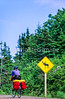 Touring cyclist on Cabot Trail, Cape Breton Island in Nova Scotia, Canada - 13 - 72 ppi