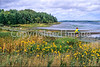 Cyclist at Panmure Island Provincial Park, Prince Edward Island, Canada - 5 - 72 ppi