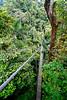 Costa Rica - Tues - 72 dpi--37