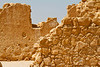 Day 7 - C3-0341 - 72 ppi-gigapixel-scale-2_00x
