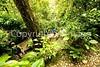 Chiapas - Palenque, Mayan ruins _mg_0326 - 72 dpi
