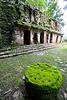 Chiapas - Mayan ruins at Yaxchilan _mg_0139 - 72 dpi