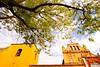 Chiapas - Colonial town of of San Cristobal_mg_0080 - 72 dpi
